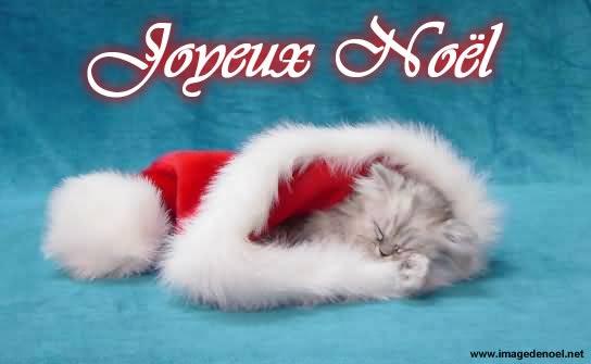 Image de Noël: Cat de Noël