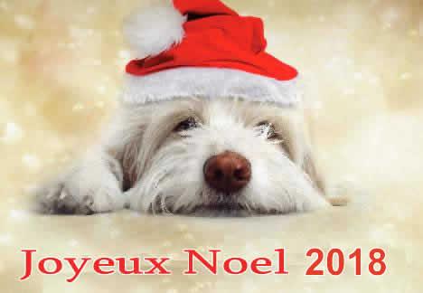 Image de Noël: Chien Noël 2018