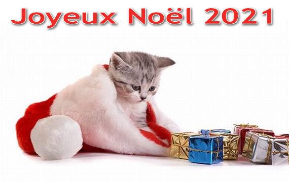 Image de Noël: Joyeux Noël 2021
