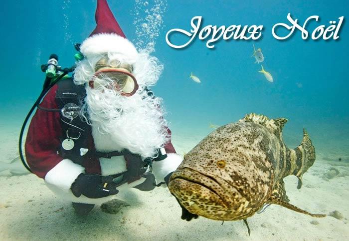 Image Père Noël: Père Noël poisson