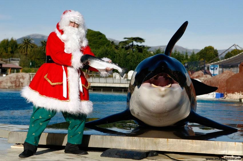 Image de Noël: Pere Noël