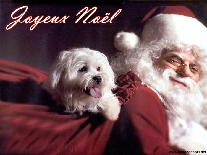 Photo Père Noël