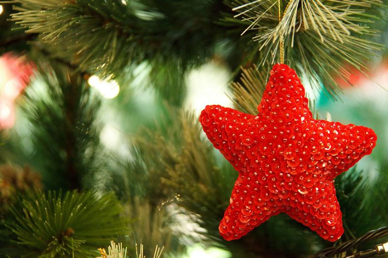 Image de Noël: étoile rouge de Noël