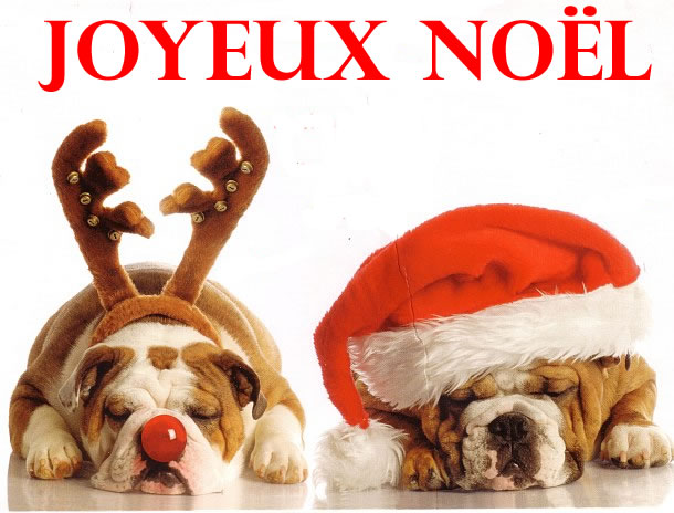 Résultats de recherche d'images pour «joyeux noel»