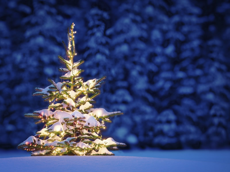 Noël Joyeux