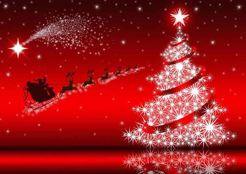 Image de Noël: Noël Sapin