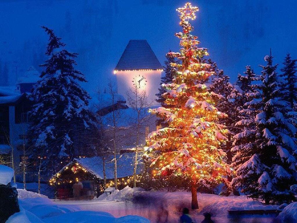 Sapin de Noël et étoile